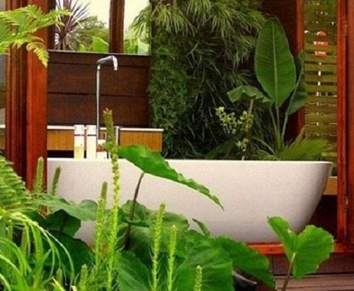 desain kamar mandi bernuansa alam