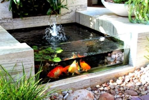 desain kolam ikan koi minimalis