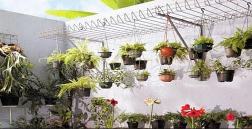 desain taman kecil untuk lahan sempit