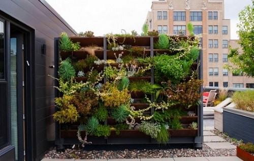 20 Desain Taman Kecil Untuk Lahan Sempit Di Halaman Rumah Anda