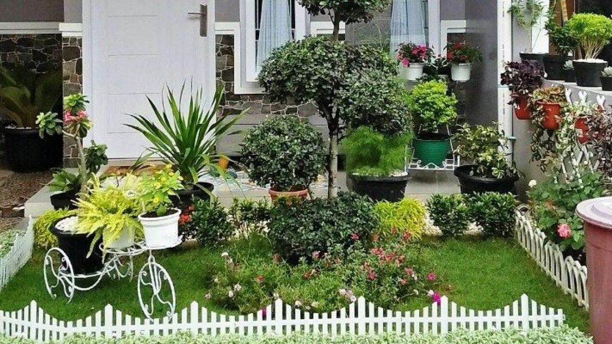 Taman Rumah Minimalis 7 Inspirasi Menata Taman Rumah