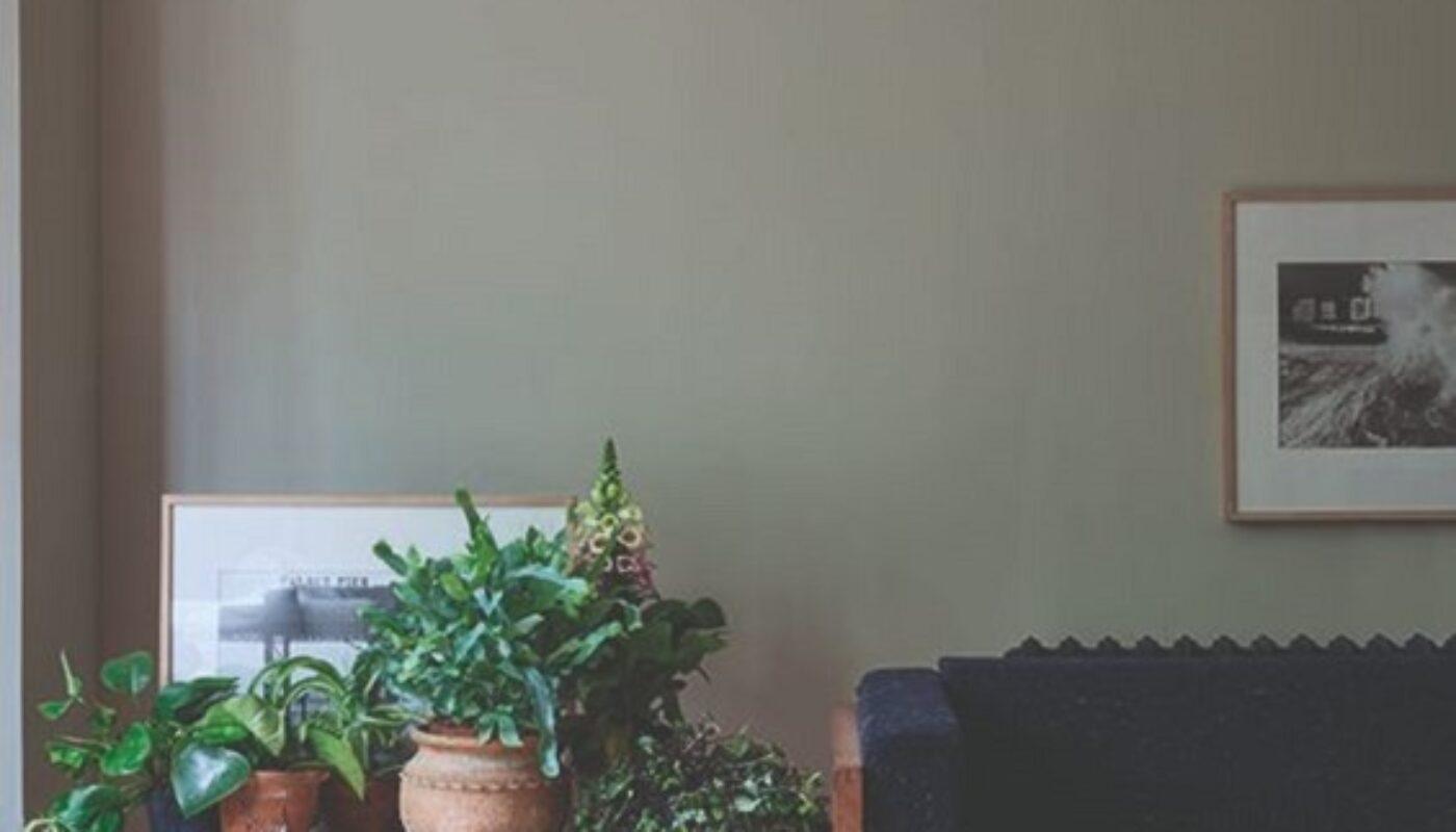 50+ Contoh Warna Cat Rumah Minimalis : Tampak Depan ...